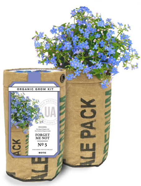 Forget Me Not Grow Kit