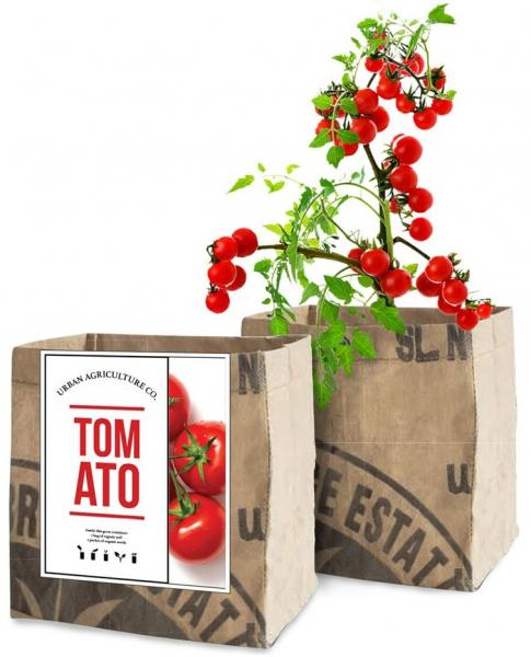 Tomato Growing Kit